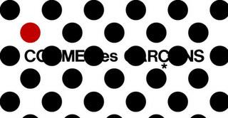 comme-des-garcons-site-3のコピー.jpg