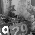 0917-6.jpg