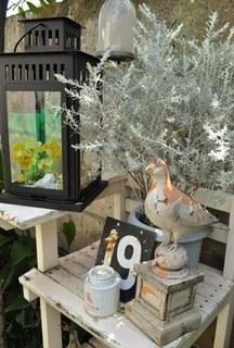 2011.04.25 garden (14).JPG