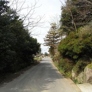 RIMG0480.JPG